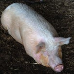 Photo taken at Kruger's Farm Market by Kyle H. on 5/19/2013