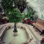 Photo taken at Westmount Greenhouse by Guillaume D. on 2/8/2015
