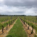 Photo taken at Newport Vineyards by Di on 5/26/2013
