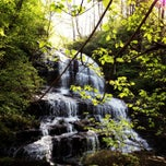 Photo taken at Pearson's Falls by Jay M. on 4/23/2013