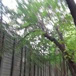 Photo taken at 서이 둘레길 by Emily K. on 6/26/2014