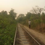 Photo taken at Bamboo Railroad by Matthew K. on 4/12/2013
