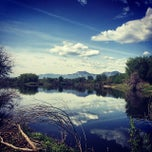 Photo taken at Walden Ponds Wildlife Habitat by Chris Z. on 5/18/2014