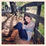 Photo taken at Windy Meadows Farm by Jen B. on 11/1/2012