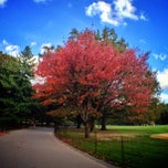 Photo taken at Central Park - Great Lawn by Antitella on 10/19/2012