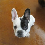 Photo taken at Barkers Pet Center by Barkers Pet Center on 10/16/2014