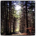 Photo taken at Powder Mills Park by Joey T. on 4/8/2012