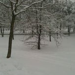 Photo taken at parco Stacchini by Gabriele B. on 2/1/2012