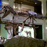 Photo taken at Houston Museum of Natural Science by Hubert L. on 1/3/2011