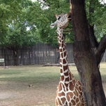 Photo taken at Great Plains Zoo by Austin H. on 8/31/2012