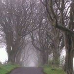 Photo taken at The Dark Hedges by Euthymia K. on 4/7/2012