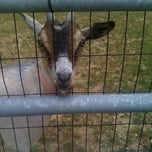 Photo taken at Walnut Hill Farm by Kristan D. on 7/24/2011