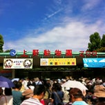 Photo taken at 上野動物園 (Ueno Zoo) by Shige A. on 6/10/2012