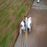 Photo taken at Flying Doggies HQ by Patrizio K. on 10/8/2011