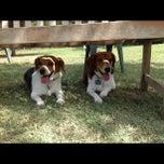 Photo taken at White Rock Lake Dog Park by Andy V. on 9/9/2012