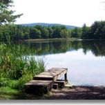 Photo taken at Lake Shaftsbury State Park by Jasen F. on 7/16/2011
