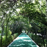Photo taken at 양재천 산책로 (Yangjaechun Trails) by Hyunjin K. on 9/13/2011