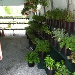Photo taken at L.D. Oliver Seed Co. by Dan S. on 5/12/2012