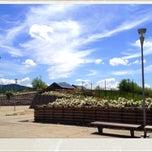 Photo taken at PAV - Parco Arte Vivente by Massimo V. on 5/22/2012