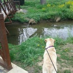 Photo taken at Purcell Park by Heather C. on 4/4/2012