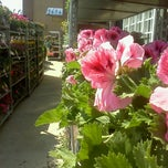 Photo taken at Lowe's Home Improvement by Caroline C. on 4/14/2012