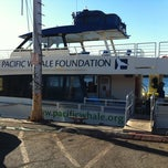 Photo taken at Pacific Whale Foundation by Vinh L. on 8/26/2012