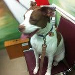Photo taken at Best Vet Animal Hospital by Eric S. on 7/14/2012