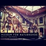 Photo taken at Museum für Naturkunde by NeuTron S. on 4/29/2012