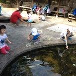 Photo taken at Qian Hu Fish Farm by Sharon M. on 7/1/2012