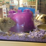 Photo taken at PetSmart by Christie N. on 4/5/2012