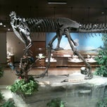 Photo taken at Dakota Dinosaur Museum by Shannonlp on 8/12/2012