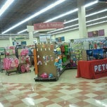 Photo taken at Petco by THIS ACCOUNT IS CLOSING VERY SOON! GO ADD OR ACCEPT BadAzzBrad 2.0 OR BE LOST FOREVER!😭😔😢😵 on 4/18/2012