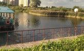 Чистые пруды, фото