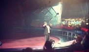 Circus Vargas -- Vista