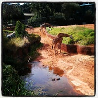 Photo taken at Perth Zoo by Tama L. on 8/24/2012