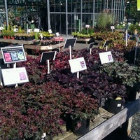 Photo taken at Swansons Nursery by Carlo T. on 10/8/2011