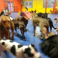 Photo taken at Urban Pooch Canine Life Center by Ryan B. on 4/10/2013