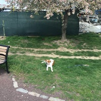 Photo taken at Tivoli Doggy Park by Austin H. on 4/8/2016