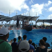 Photo taken at Miami Seaquarium by Terri O. on 1/13/2013