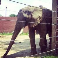 Photo taken at Toledo Zoo by Mitchell O. on 7/21/2013