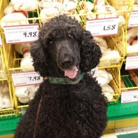 Photo taken at Pet Supplies Plus by Kim M. on 10/4/2014