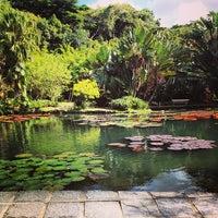 Photo taken at Jardim Botânico do Rio de Janeiro by Luis R. on 5/8/2013