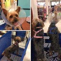 Photo taken at PetSmart by Q on 2/14/2015