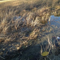 Photo taken at Saddle Hills Disc Golf Course by Dustin U. on 12/18/2012