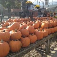 Photo taken at Pemberton Farms & Garden Center by Daniel H. on 10/15/2012