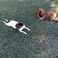 Photo taken at Shawnee Bark Park by Nicole M. on 10/18/2013