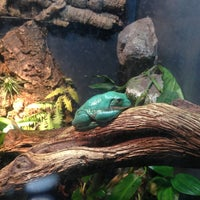 Photo taken at Texas State Aquarium by Melissa G. on 4/21/2013