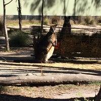 Photo taken at Tidbindilla Nature Reserve Visitor's Centre by Elsa M. on 9/30/2014