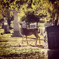 Photo taken at Mount Olivet Cemetery by Nanci M. on 10/11/2012