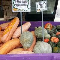 Photo taken at Nicks Garden Center & Farm Market by Allison M. on 11/3/2013